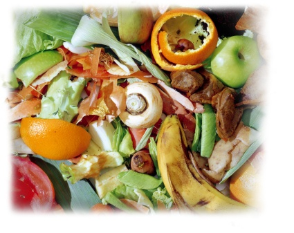 commercial food waste recycling program